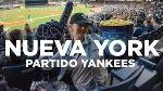 york-yankee-stadium-n43